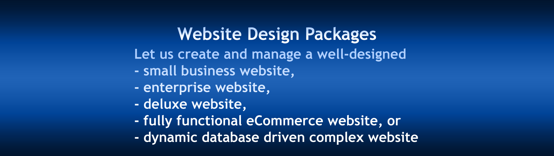Slide 4 - Website Design Packages